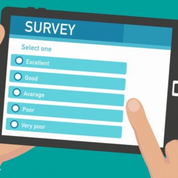 survey pic